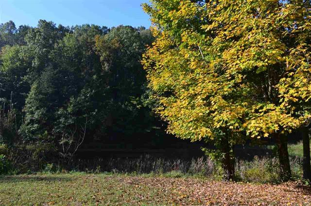 109 Acres SURVEYED Land for Sale in Hawkins Co., TN 37857