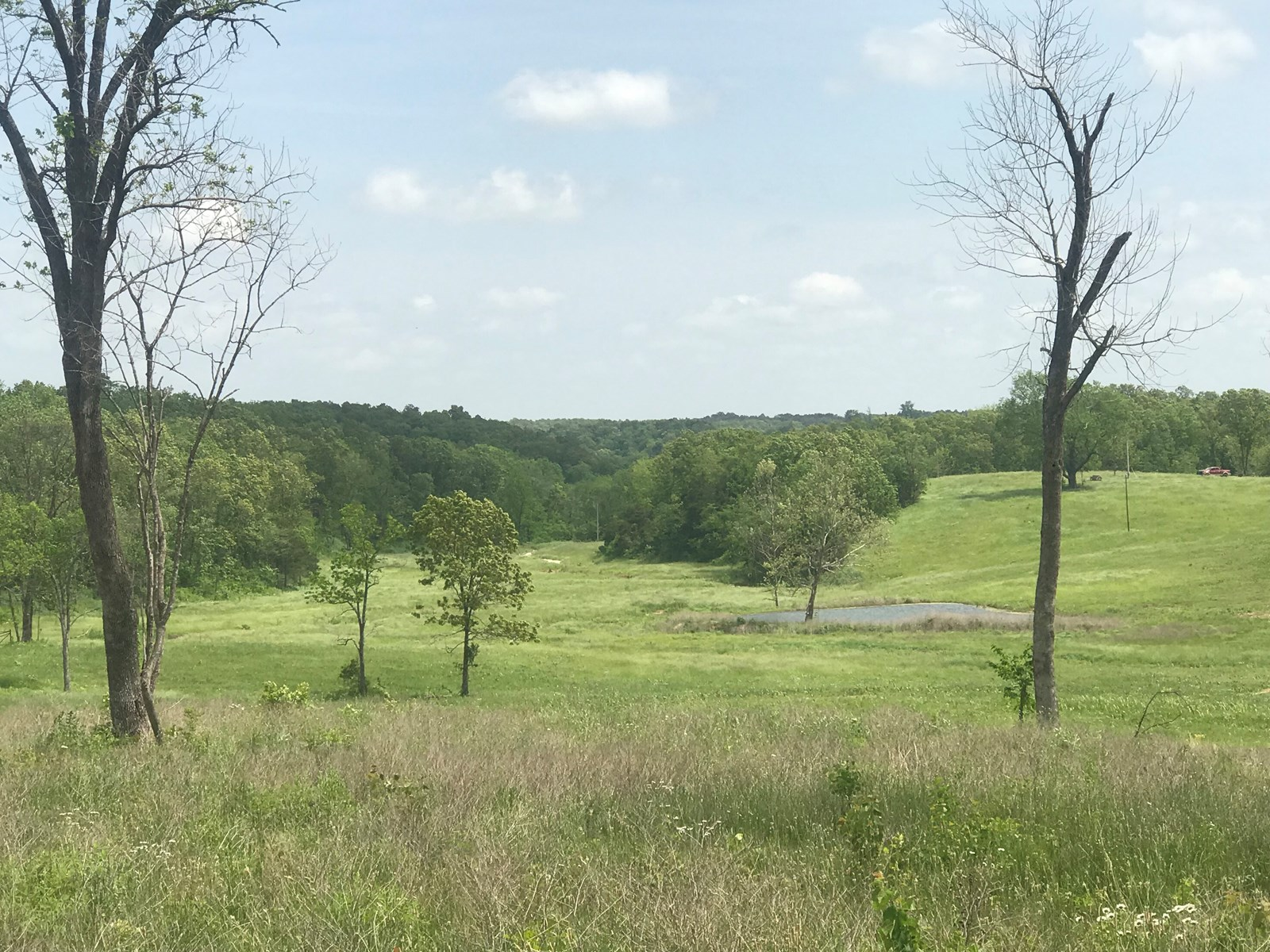 Land for Sale - 2 Wells - Newer Fencing