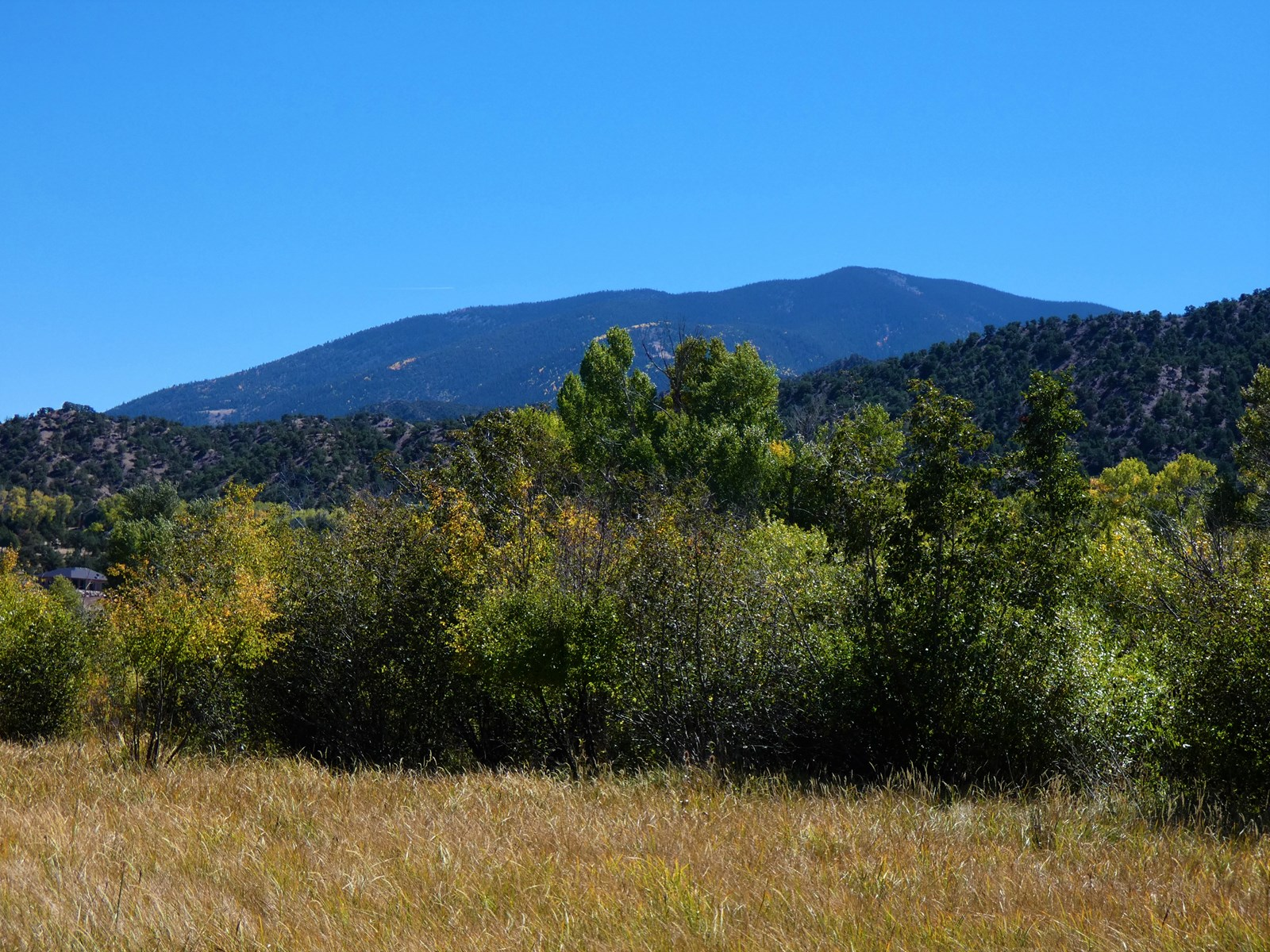 Beautiful Lot in Little River Ranch-1109 E Ouray Ave
