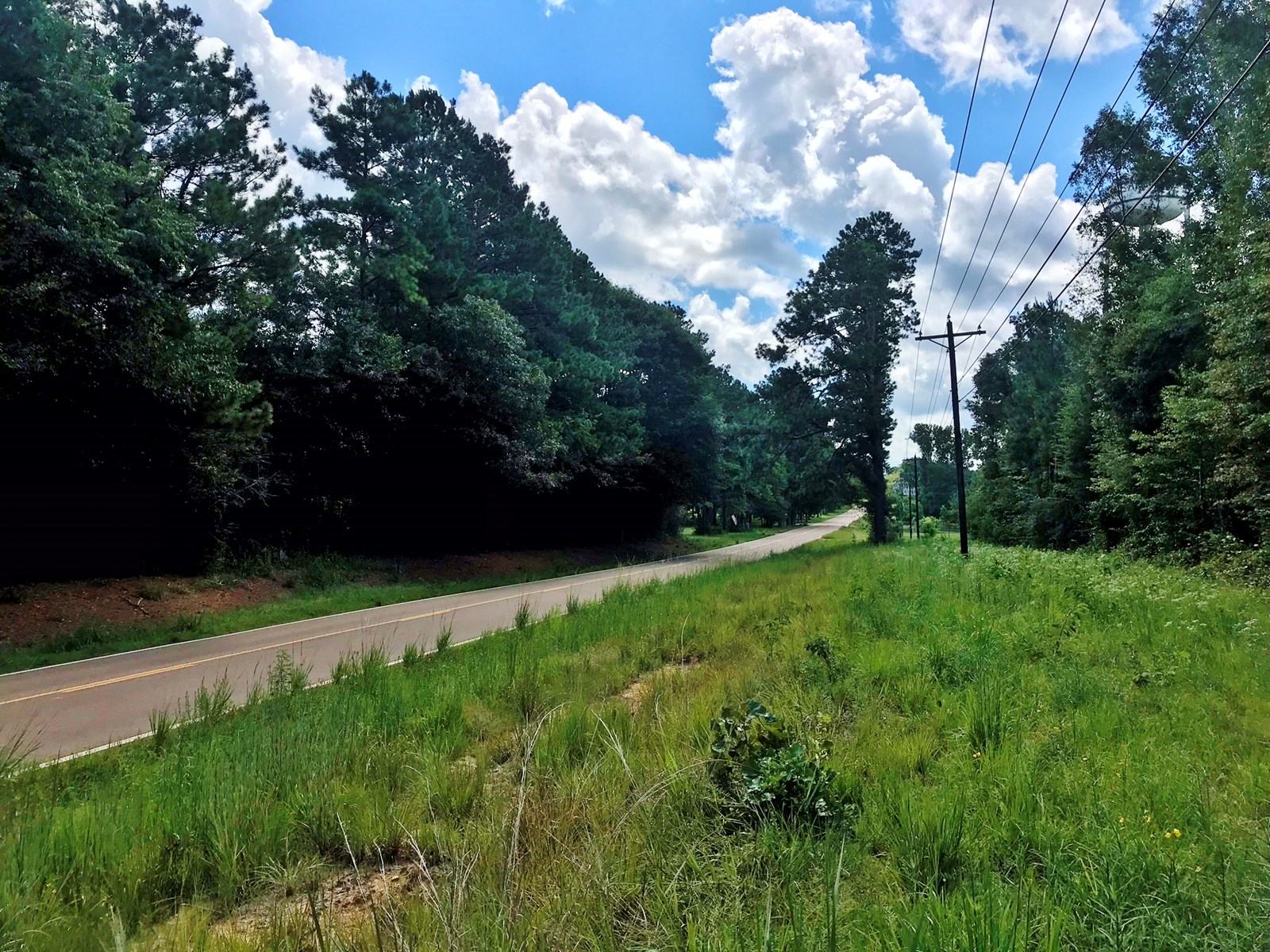 Amite County, MS Home Site Land for Sale Smithdale, MS