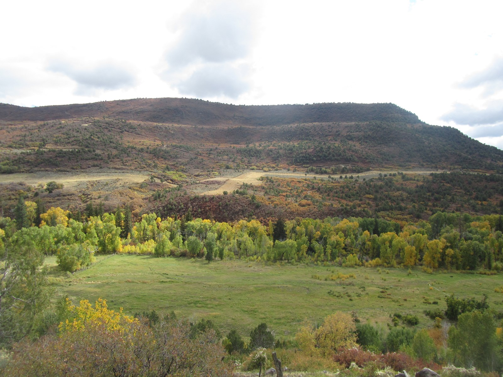 Vacant Land for Sale in Western Colorado with Irrigation