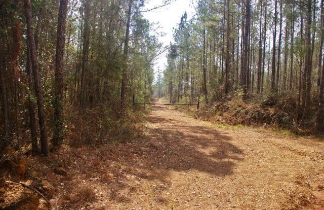 9.5 Acres Home Site/ Weekend get Away Land for Sale SW MS