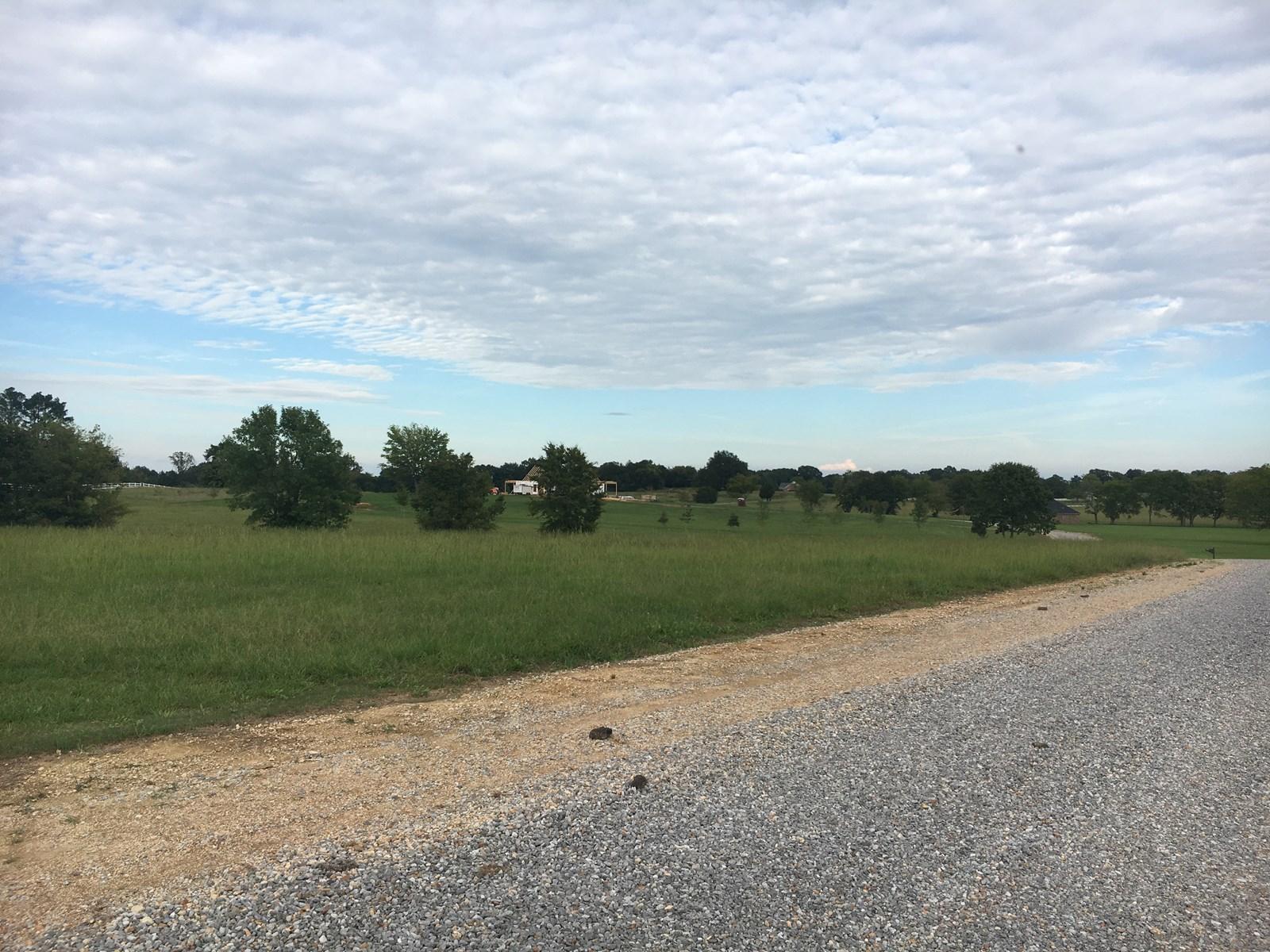 Land for Sale – Oktoc Rd, Starkville, MS 39759