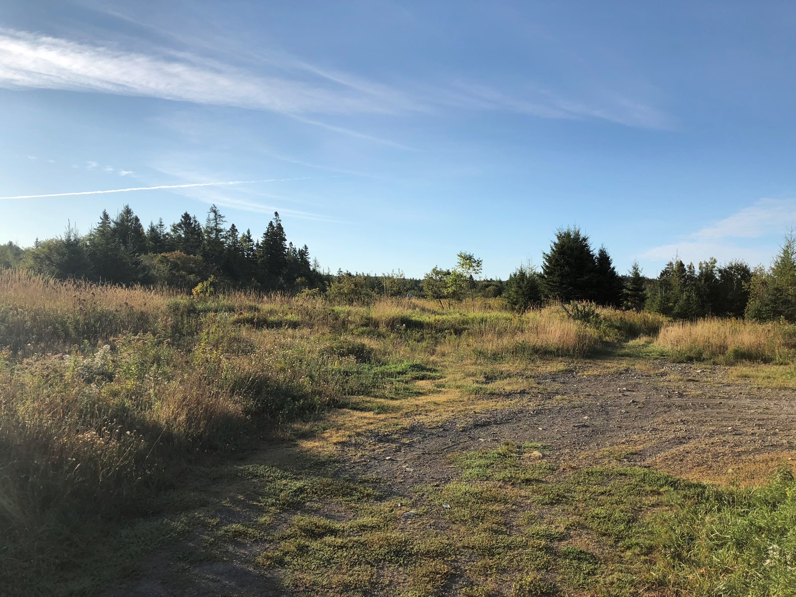 Land For Sale In Downeast, Maine
