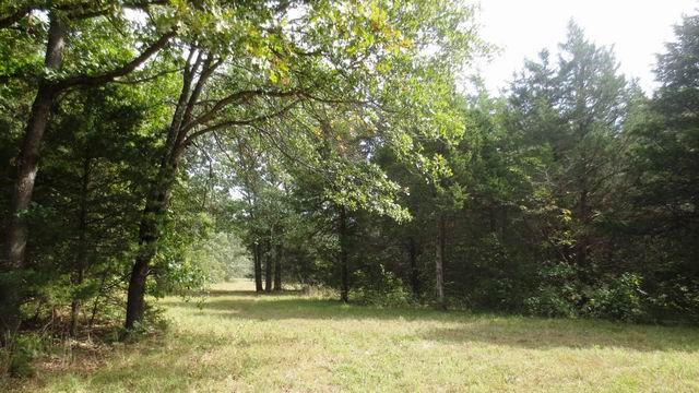 Recreational Land For Sale In Cedar County, Missouri
