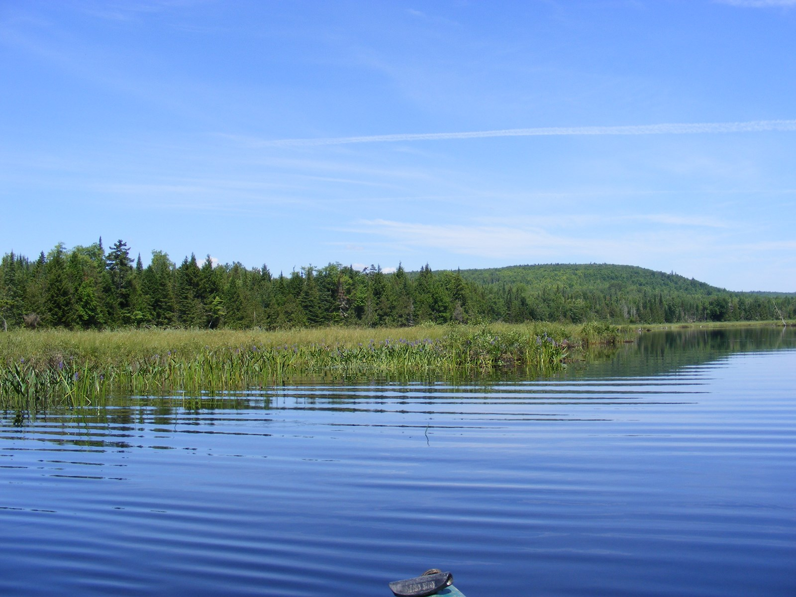 393 Acres Maine land for sale in Oakfield, ME