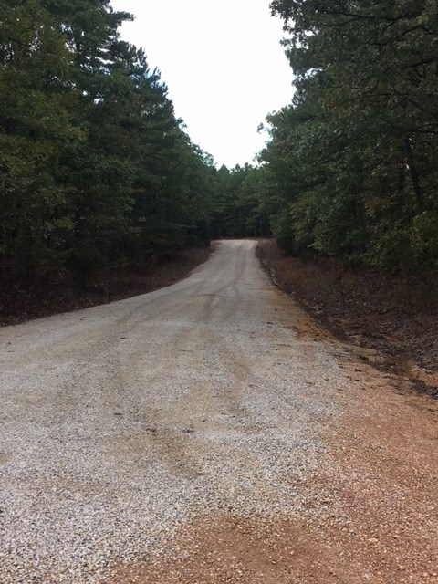 Land for Sale - Marketable Timber - Hunting