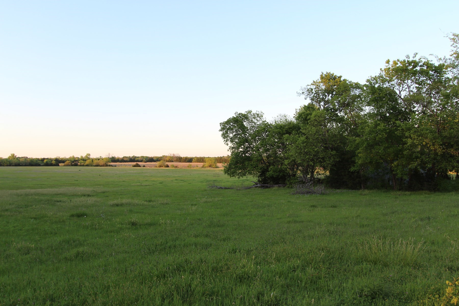 Ranch and Recreational Land for Sale in Lamar County, TX