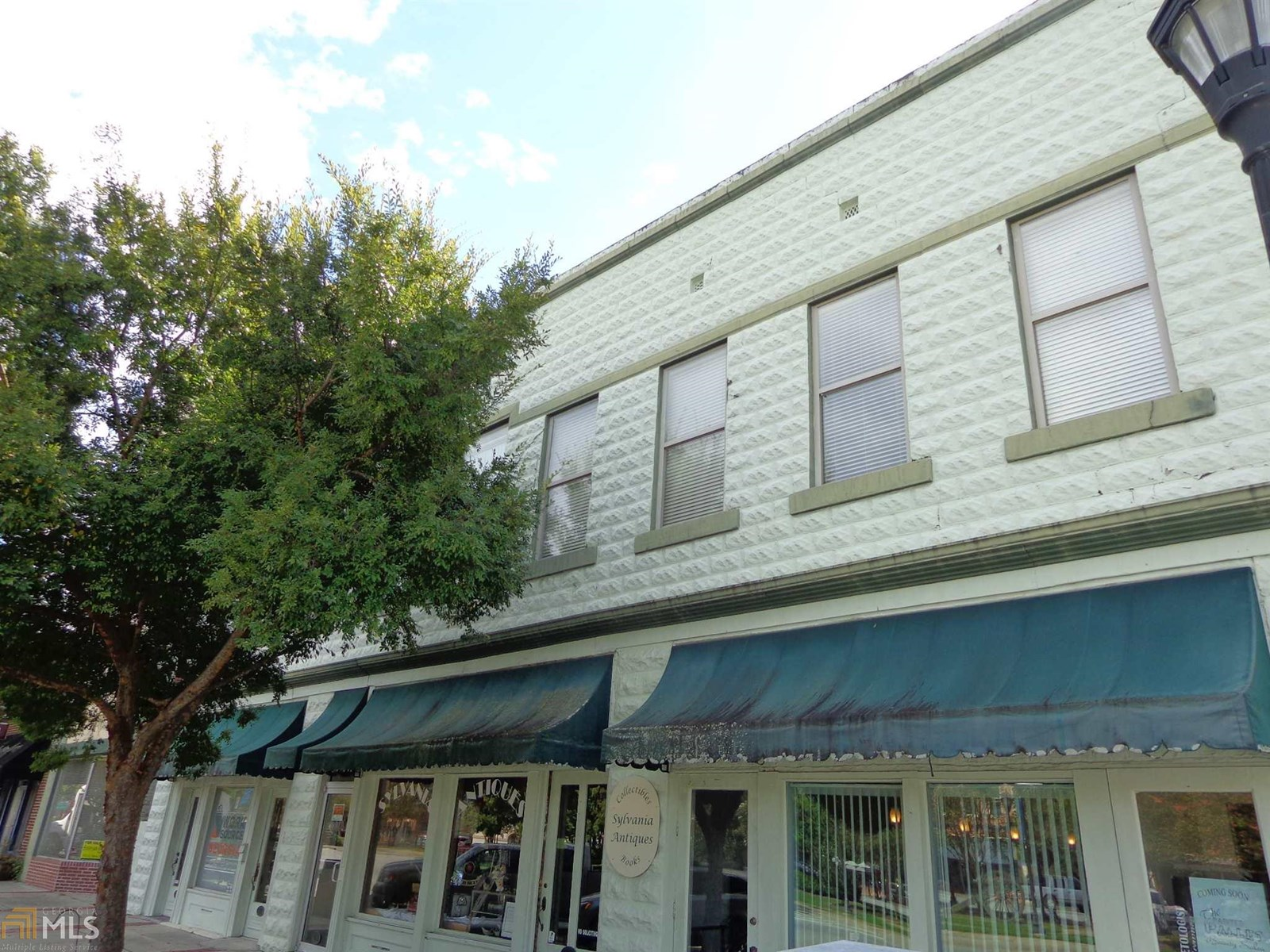Commercial Property in Downtown Sylvania, GA