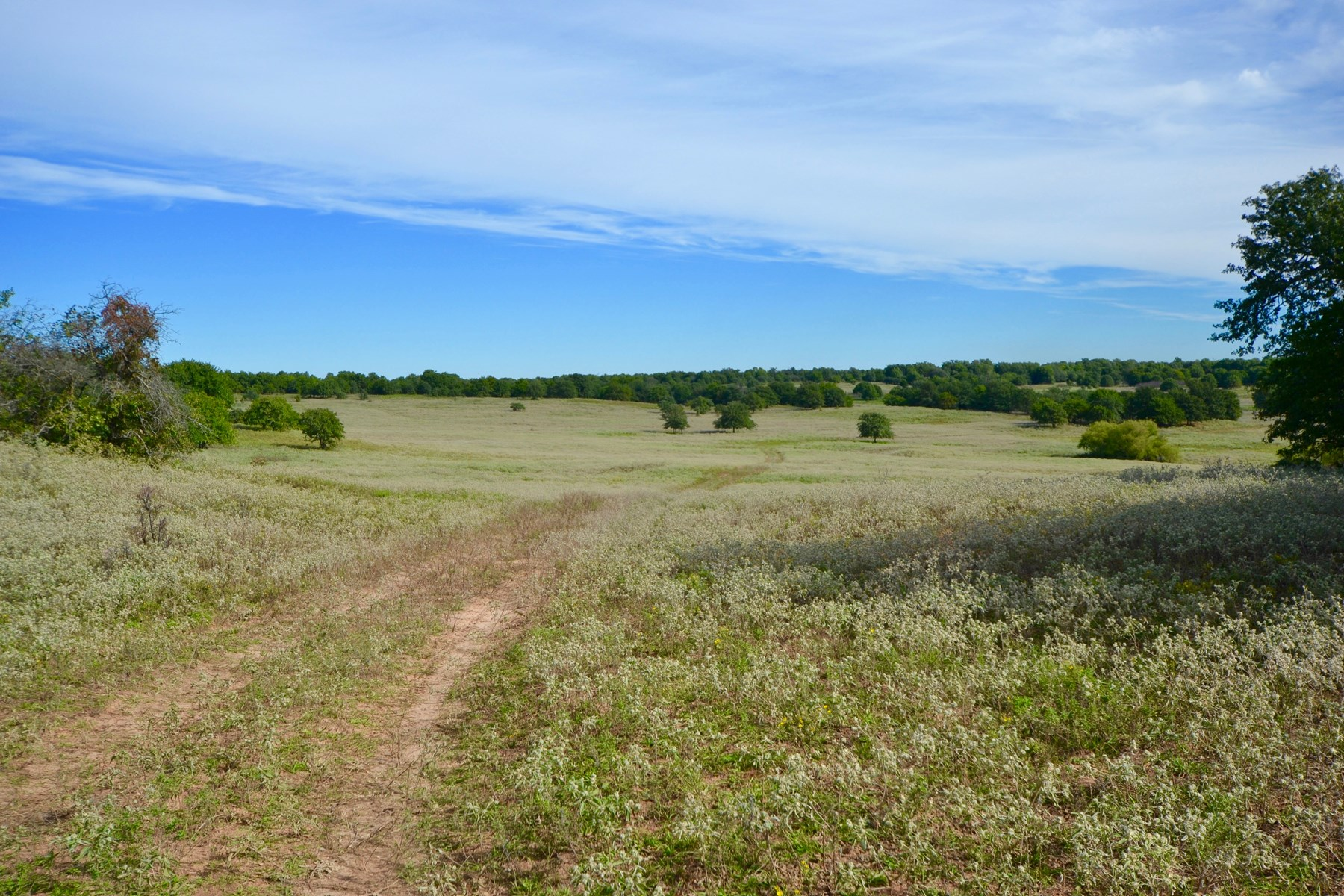LAND PROPERTY FOR SALE CEMENT CADDO COUNTY OKLAHOMA AUCTION