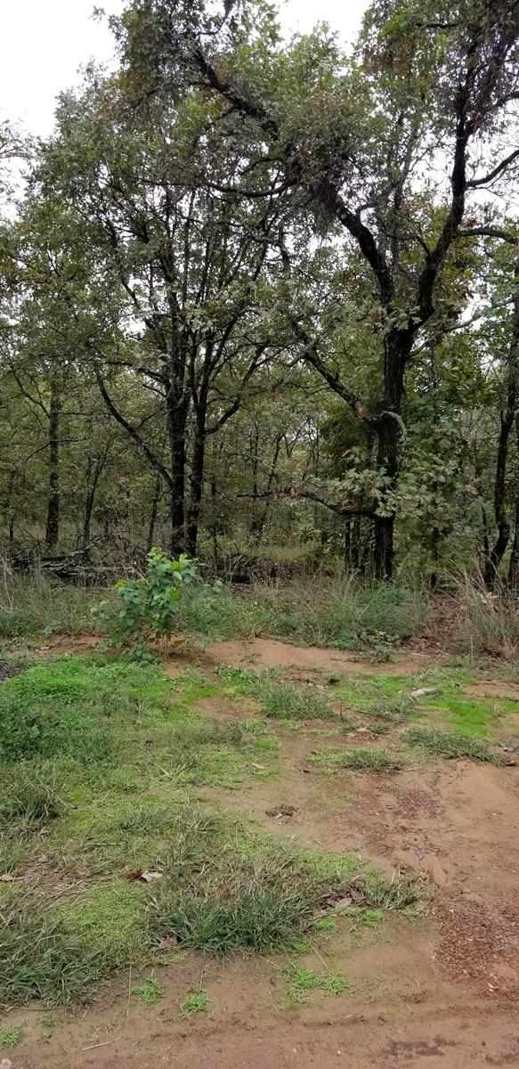 5 Acre With or W/O Cabin near Sallisaw OK & Ft. Smith AR