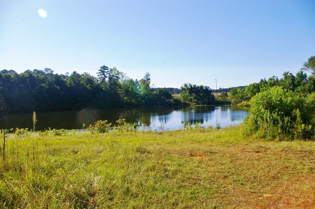 Commercial / Residential Development Land for Sale McComb MS
