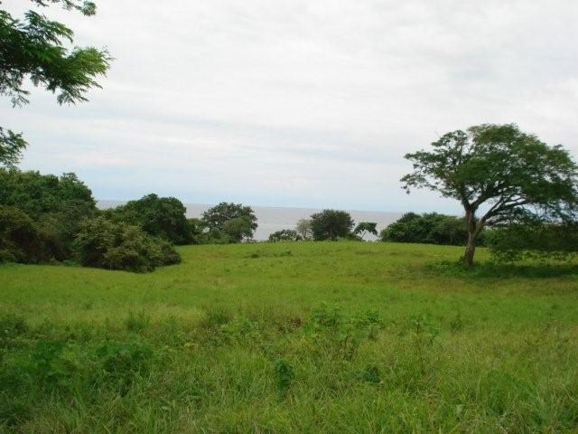 1 HECTARES CLOSE TO THE BEACH IN PEDASI PANAMA