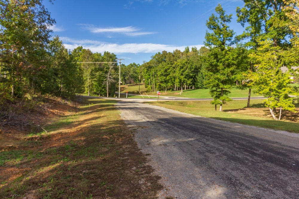 Great Building Lot; Established Subdivision in Selmer, TN
