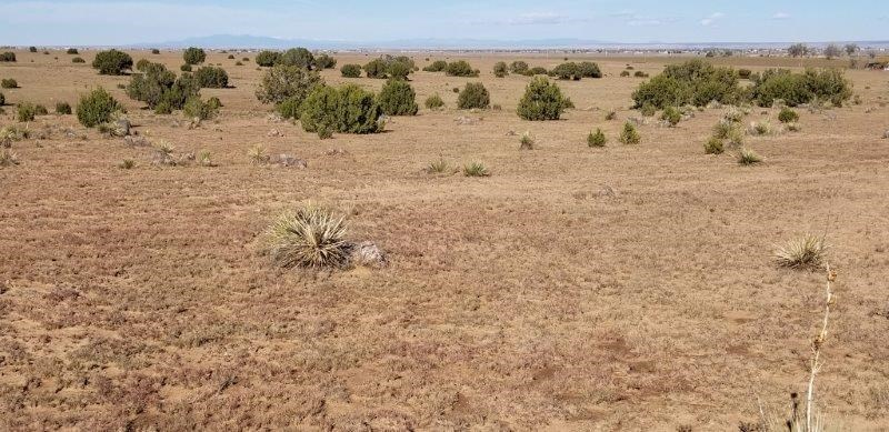 Moriarty NM 54 Acres For Sale Manufactured Home Site