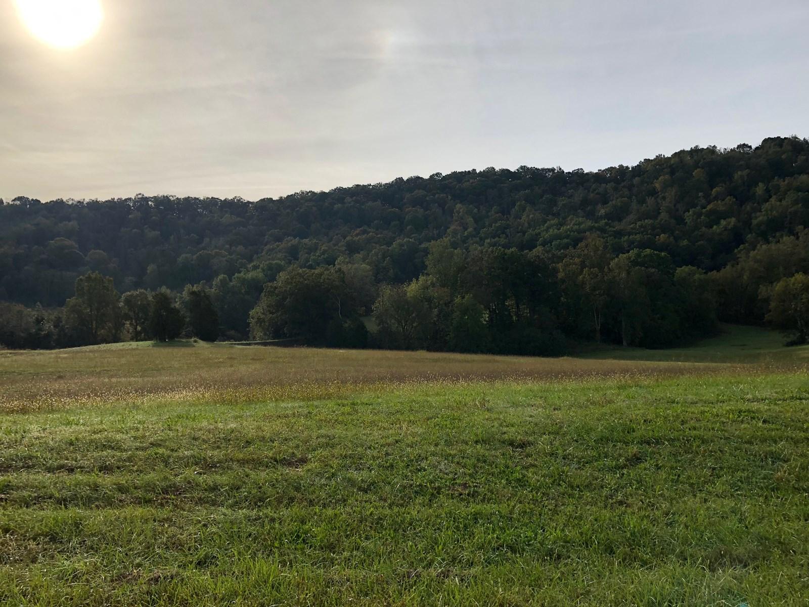 Gentleman's Farm in Beautiful Hawkins Co., TN For Sale