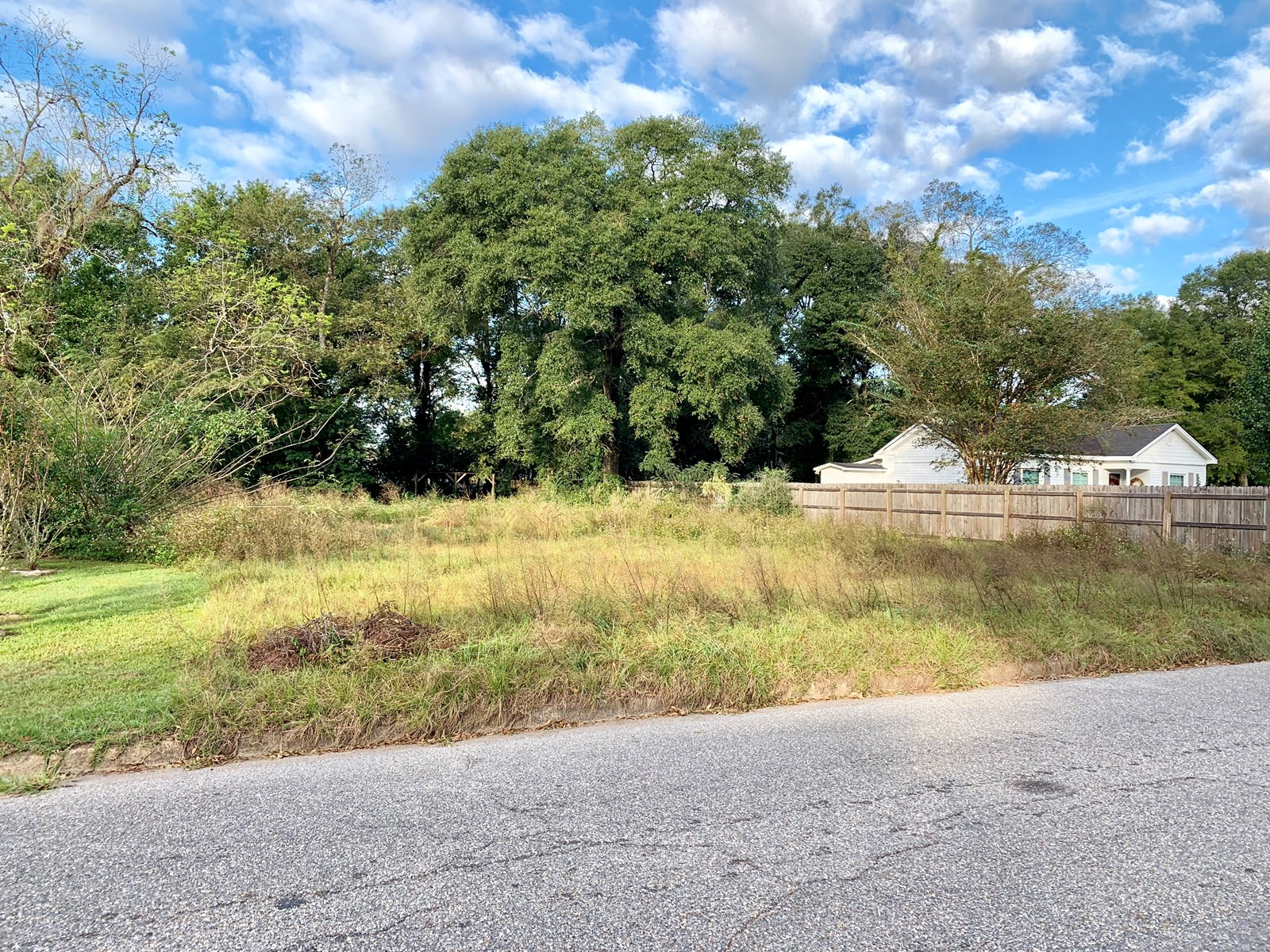 80 x 160 LOT PM S ACADEMY STREET IN GENEVA, AL FOR SALE