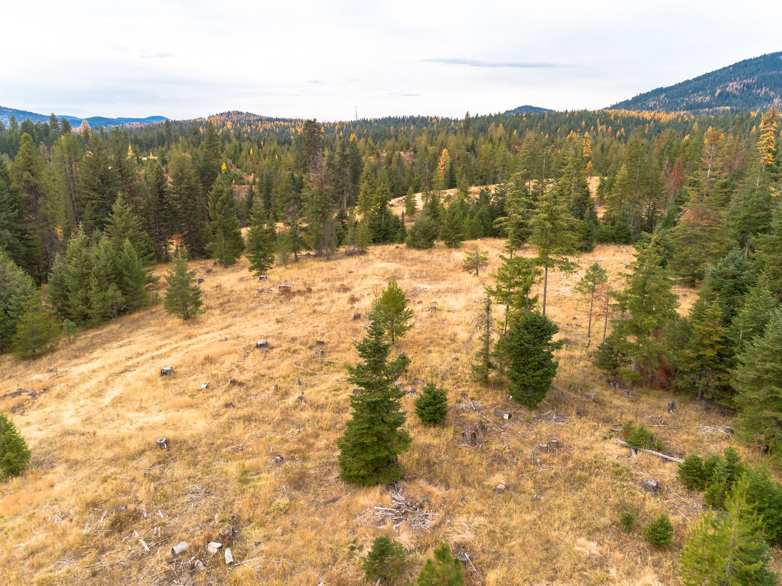 Idaho Rural Residential Acreage For Sale