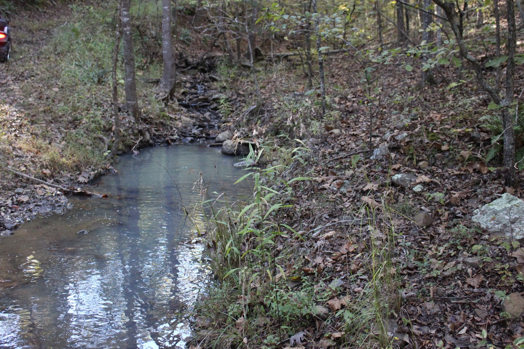 Elkins, Arkansas-Madison County 790 Acres For Sale
