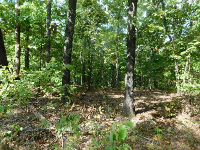 Recreational Missouri Acreage For Sale Near Bull Shoals Lake