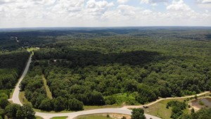 RECREATIONAL LAND FOR SALE IN BOLLINGER COUNTY, MISSOURI