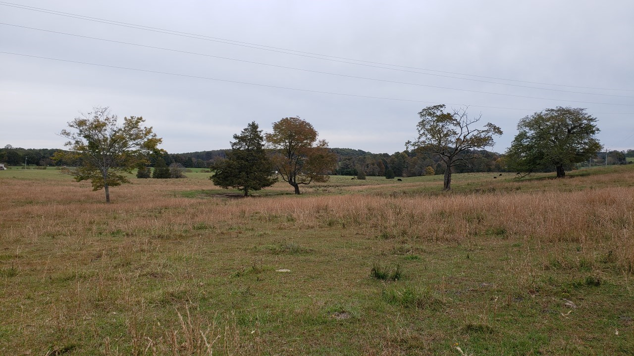 15.3 acre farm for sale in Eubank Kentucky