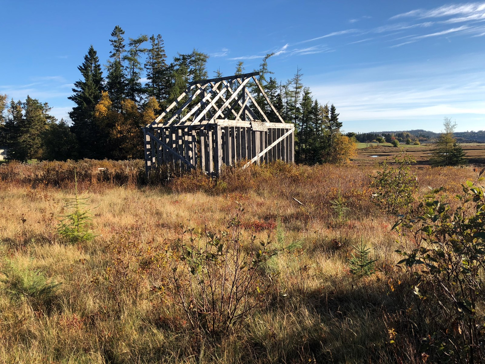 Coastal building lot for sale in Trescott Township, Maine