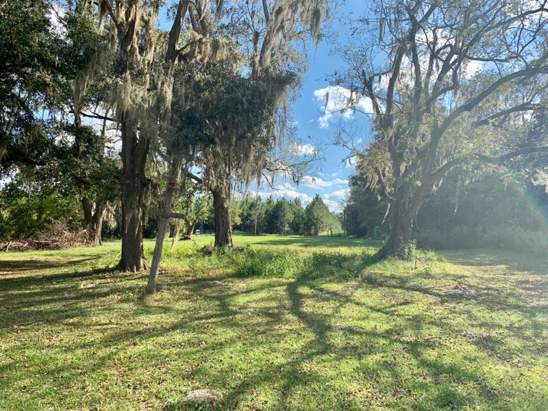 LAND FOR SALE - PASTURE, HOME SITE - 54+ Acres Newberry, FL