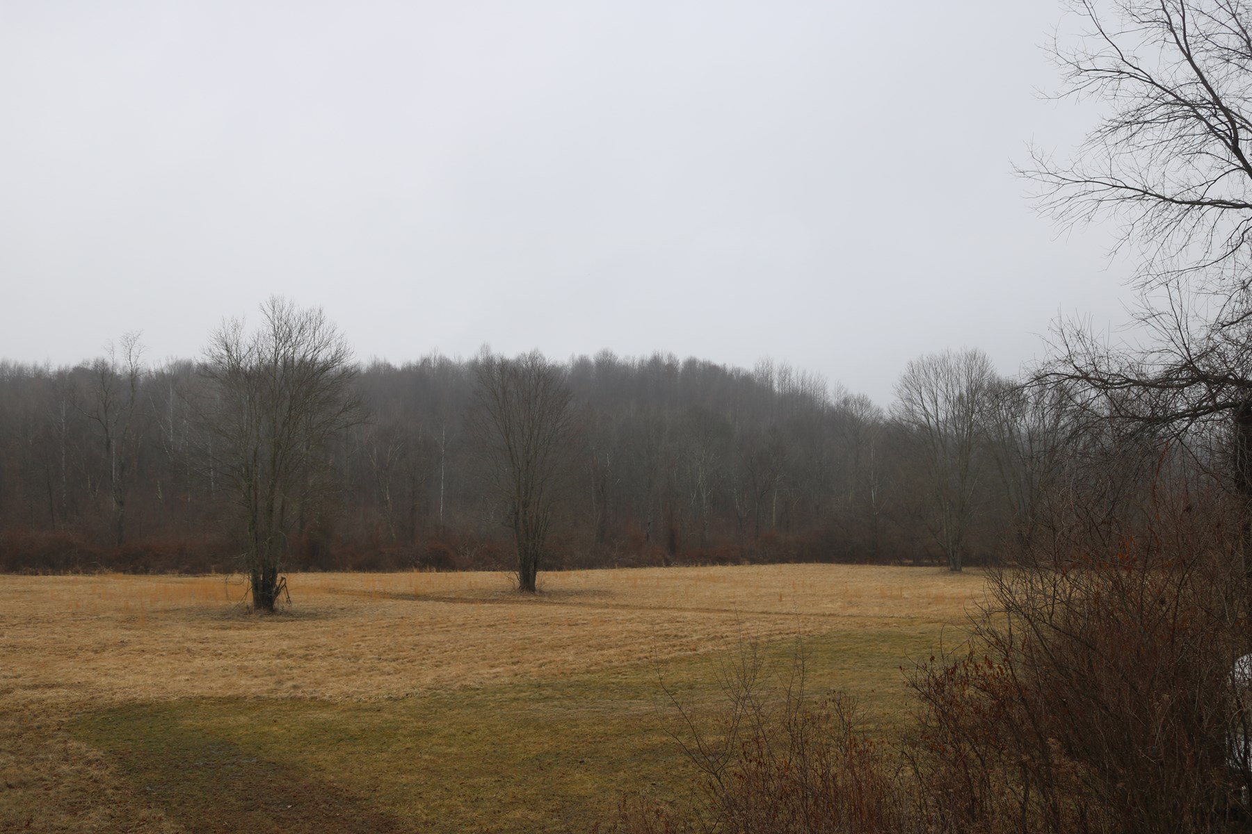 Vinton County - 36 +/- acres Vacant land