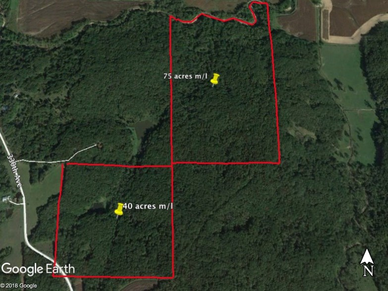 Clarke County Hunting Land Auction