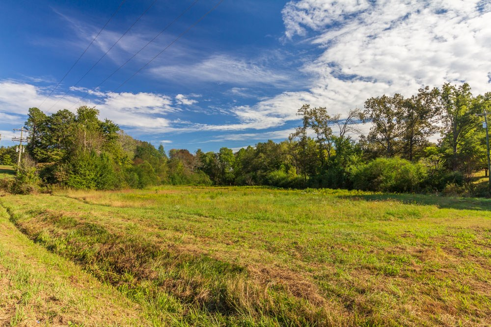 Almost 60 Acres; Corner of Hwy 45 and Selmer Country Club