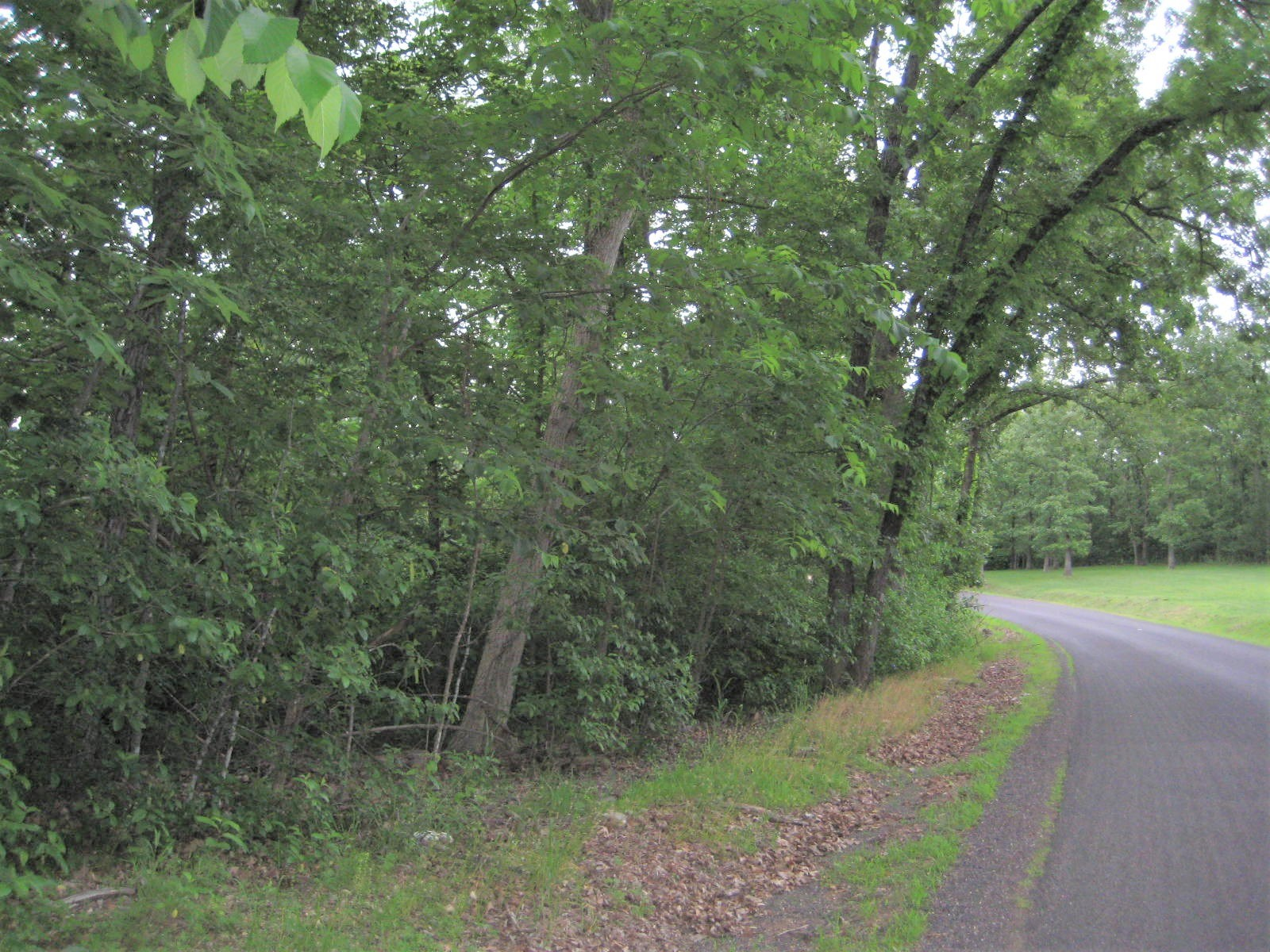 Land For Sale Near Lake of the Ozarks! 14 +/- Acres!