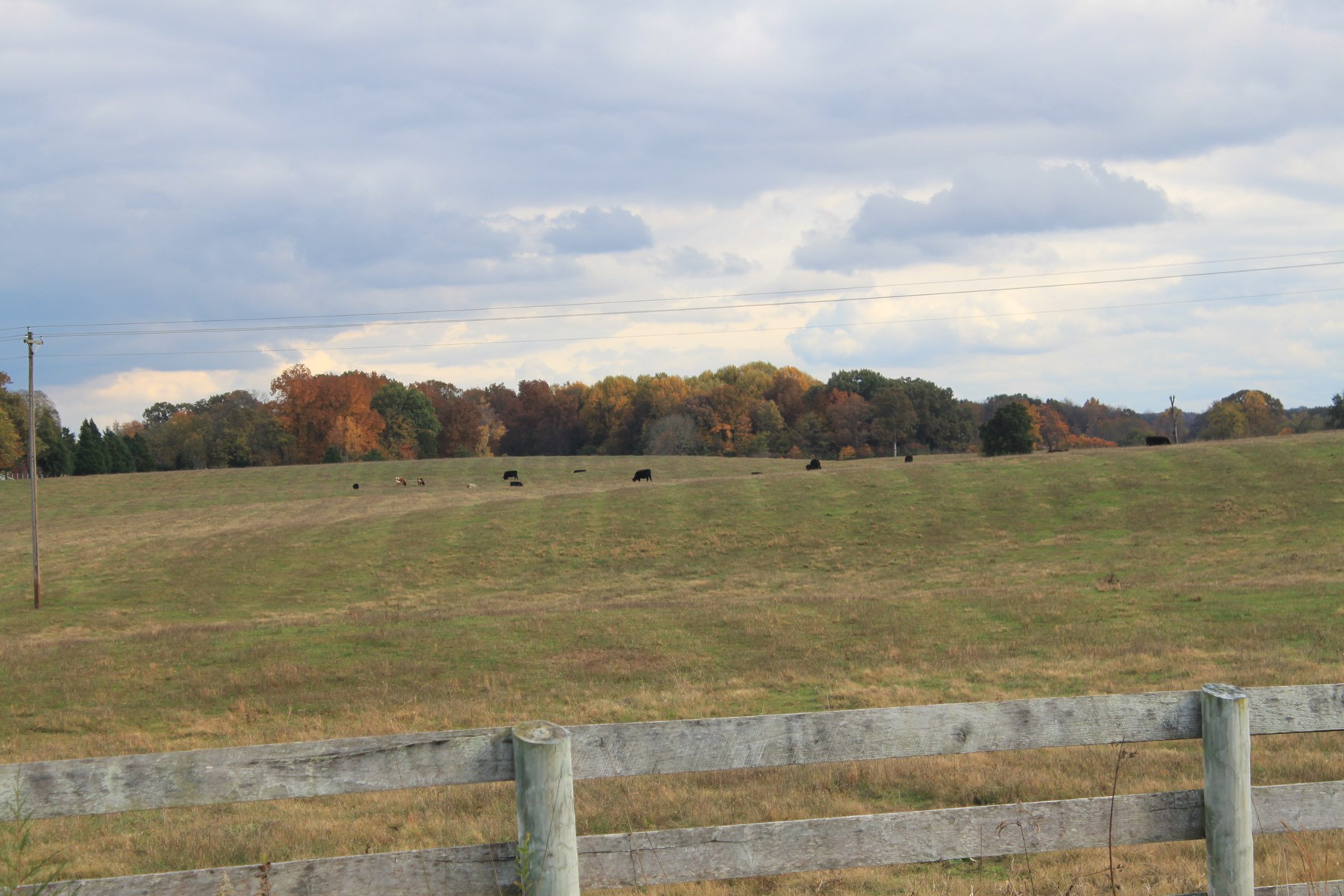 Prime Farm Land and Development Land in Bowling Green, KY