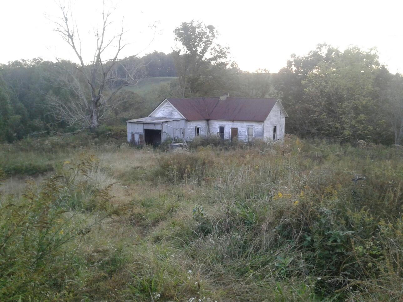 OLD HORSE FARM AND HOME SITE! 30 ACRES, ROANE COUNTY!!