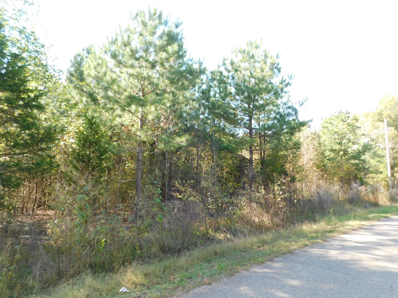LAND FOR SALE IN TN NEAR GOLFING, FISHING, HUNTING, TN RIVER