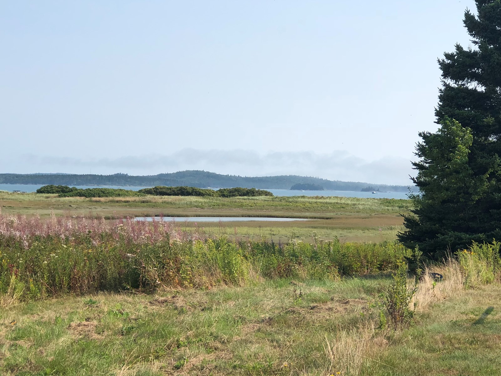 Home lot for sale in coastal Lubec Maine