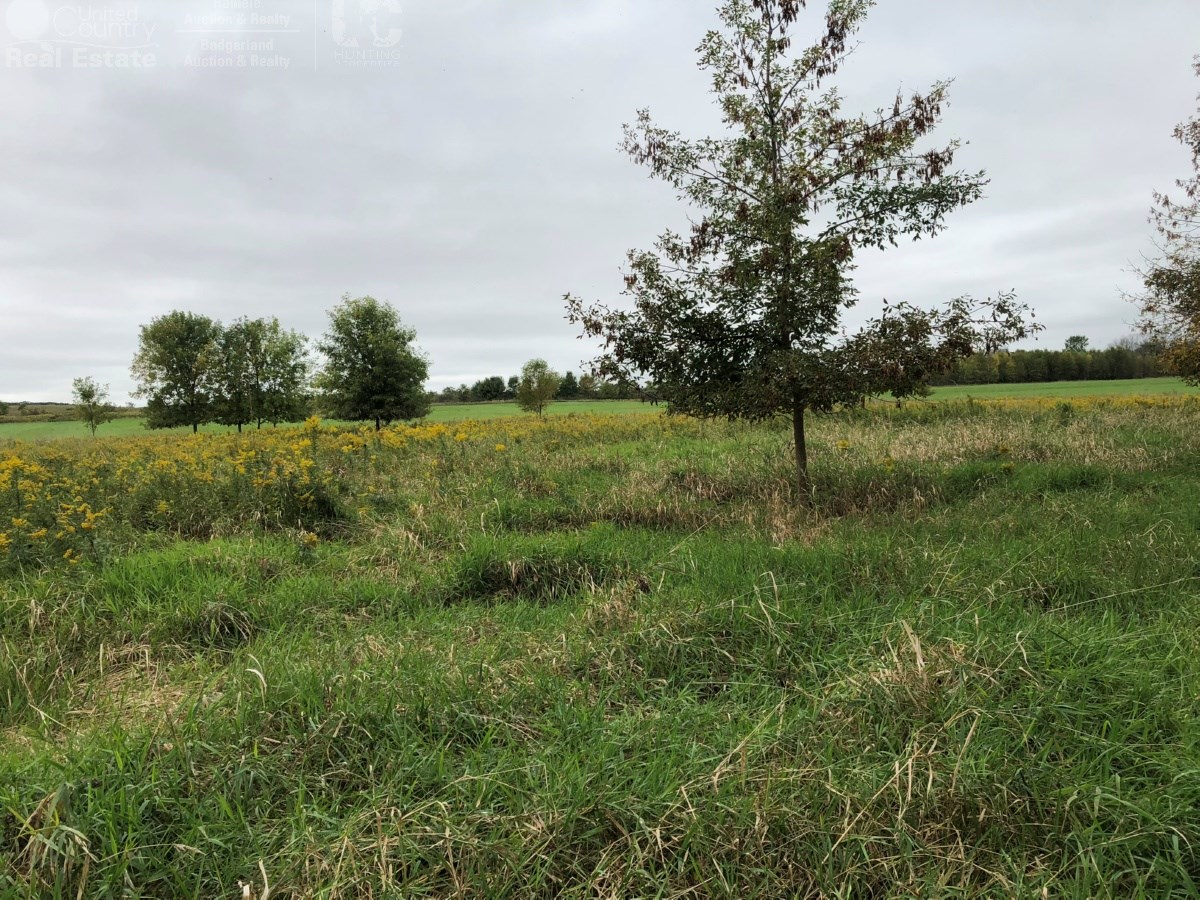 Secluded Buildable Acreage in Ozaukee County, Wisconsin