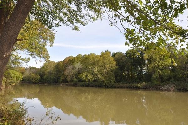 LAND FOR SALE ON BLACKFORK RIVER BOUNDING NATIONAL FOREST