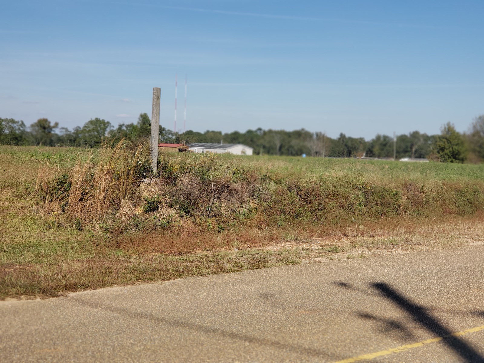 4 ACRES FOR SALE HARTZOG RD, WICKSBURG, ALABAMA