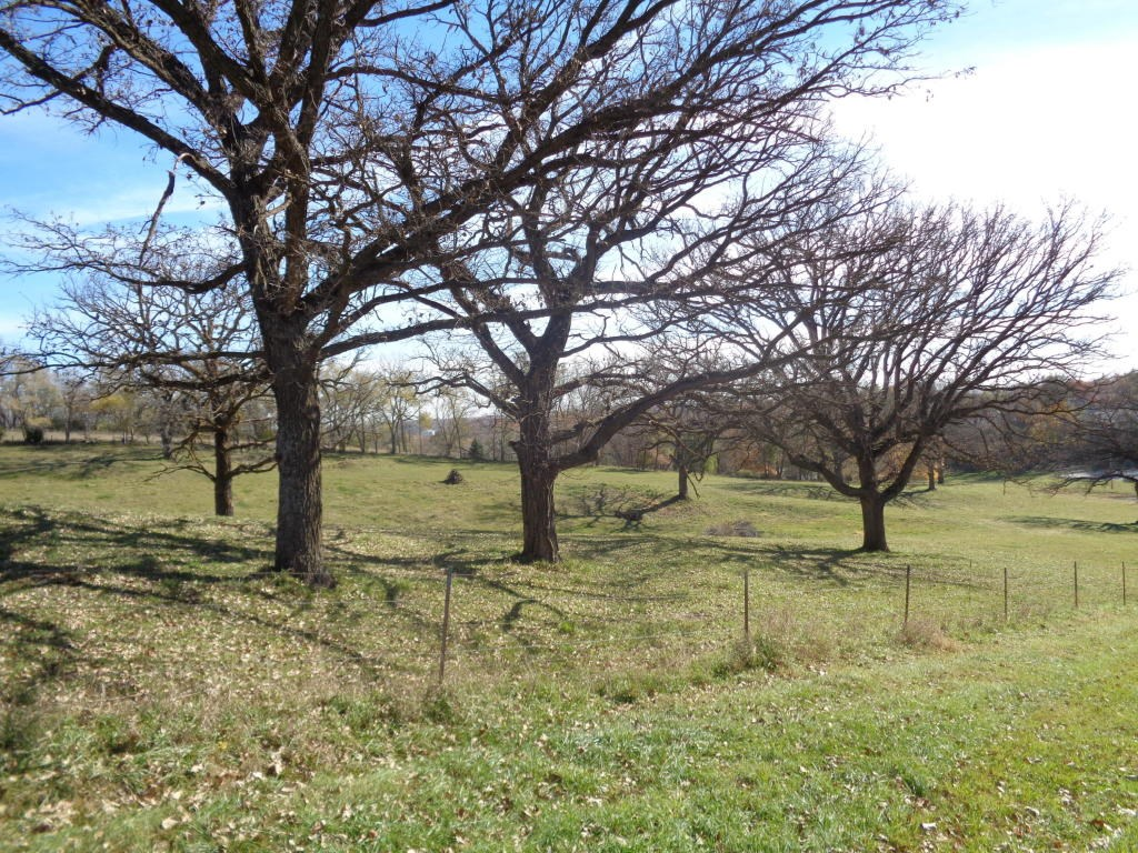 3.72 Acres to build your dream home. Harrison Co For Sale Ia