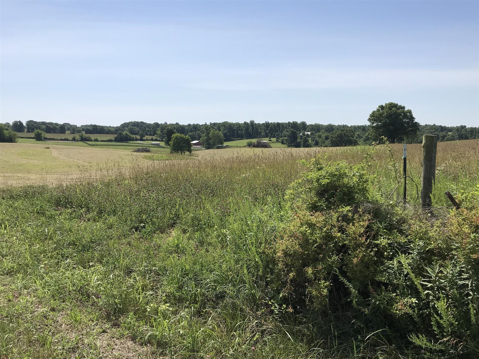 Amazing 10 Acre Parcel on West Lick Creek Rd Franklin TN!