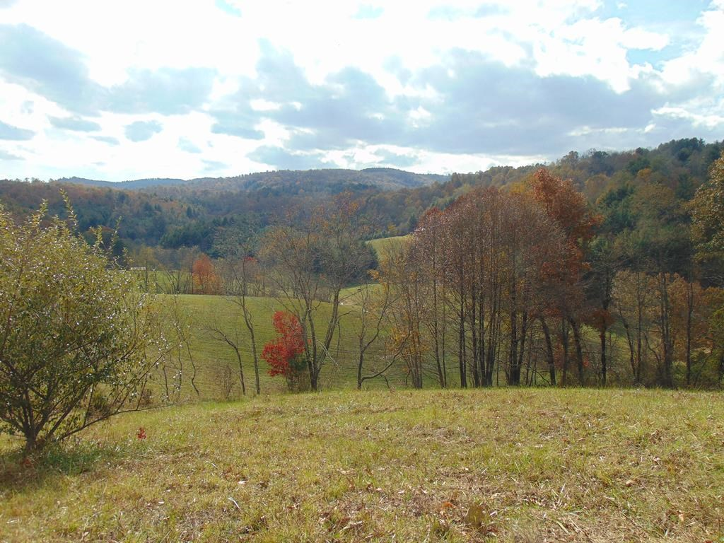 Gorgeous farm tract for sale in Grayson County Virginia