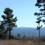 Ouachita Mountain Property Joining National Forest