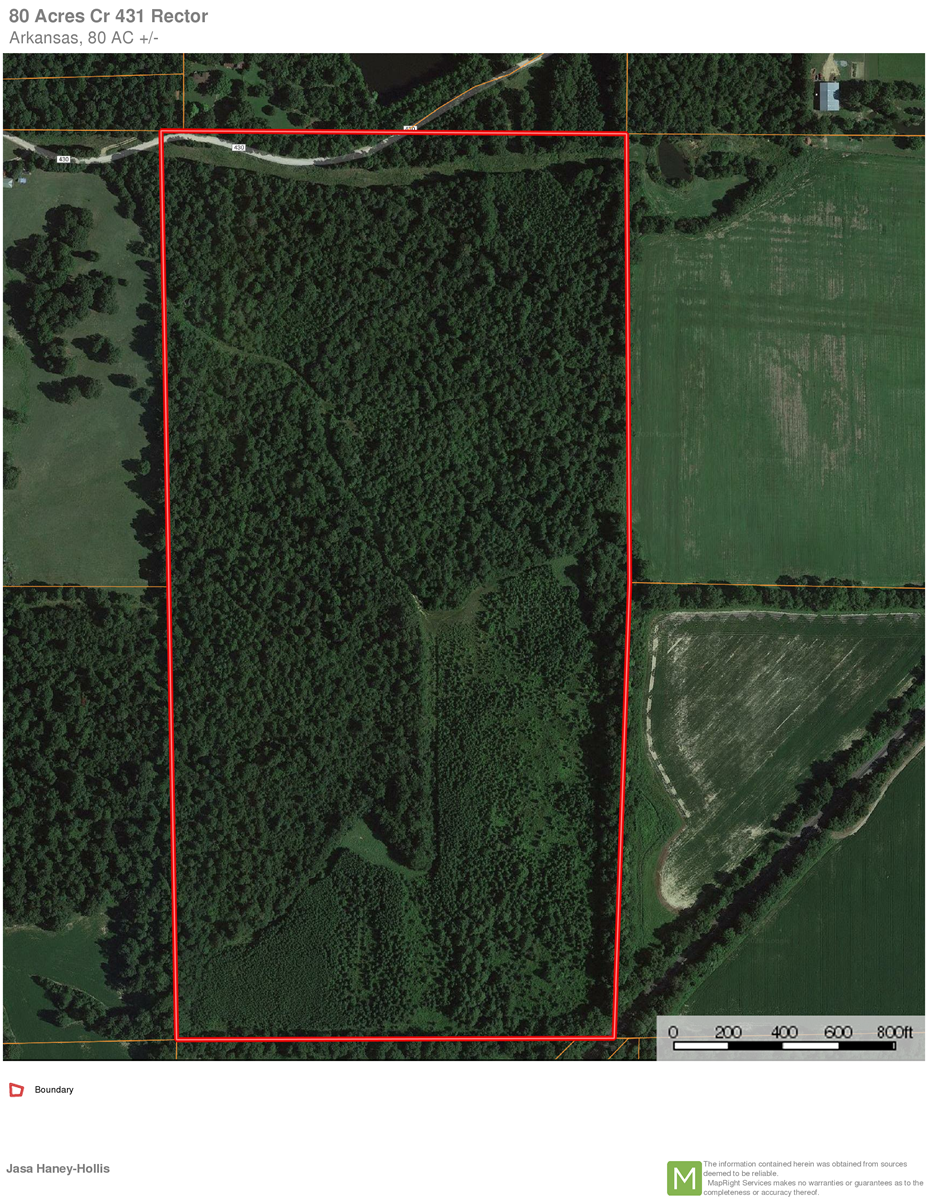 80 Acres for Sale in Clay co. Arkasnsas