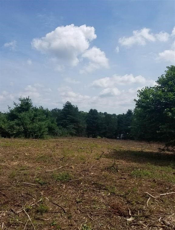 Freshly Cleared Lot in Christiansburg VA