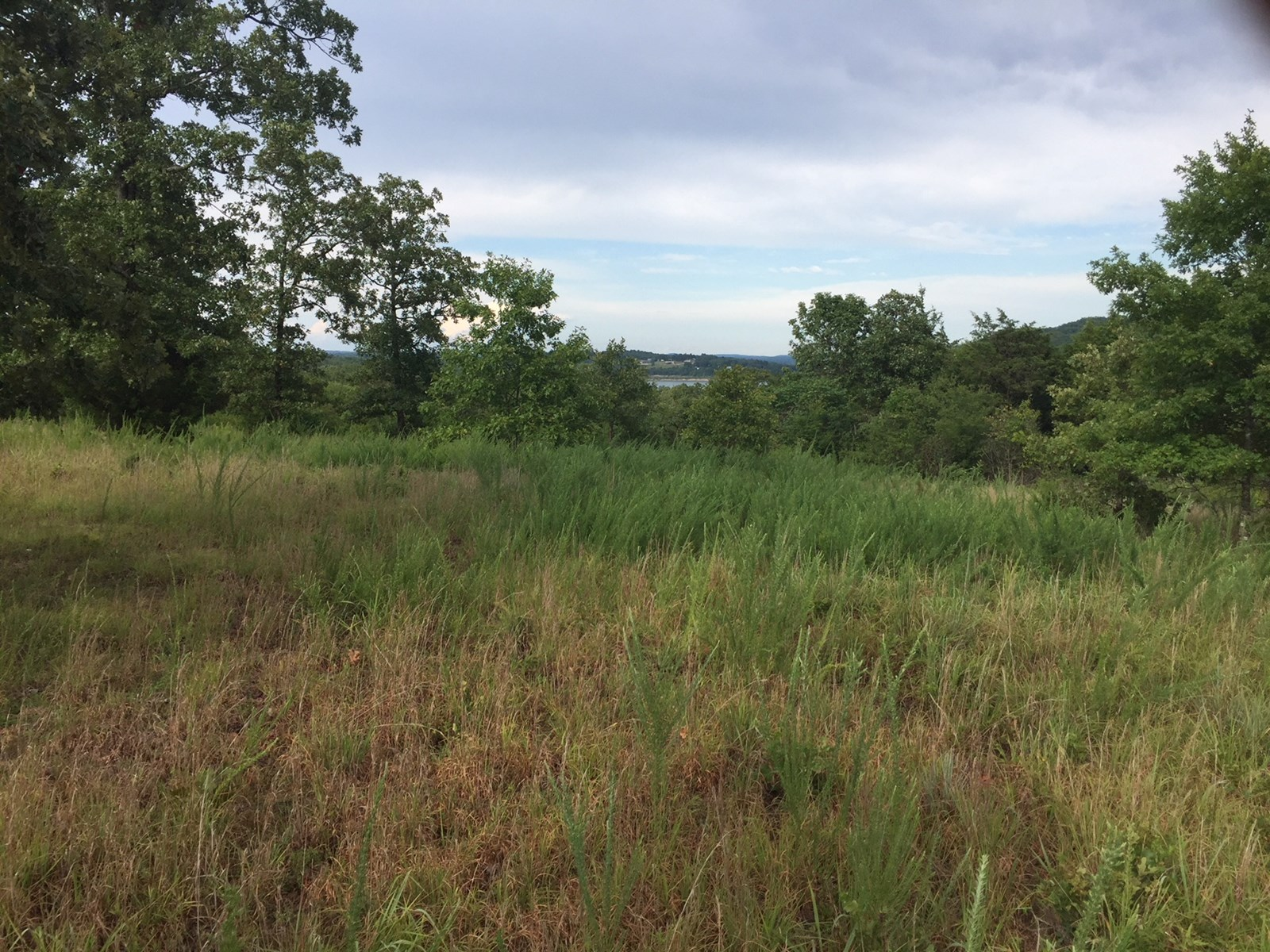 View of Bull Shoals Lake for sale