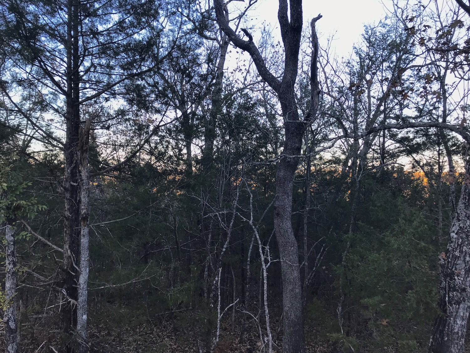 Land For Sale In Mountain Home, Ar In Baxter County
