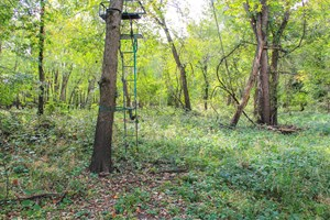 CHRISTIAN COUNTY HUNTING PROPERTY FOR SALE