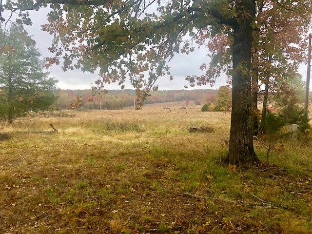 Looking for a great Hunting Property with pasture land for l