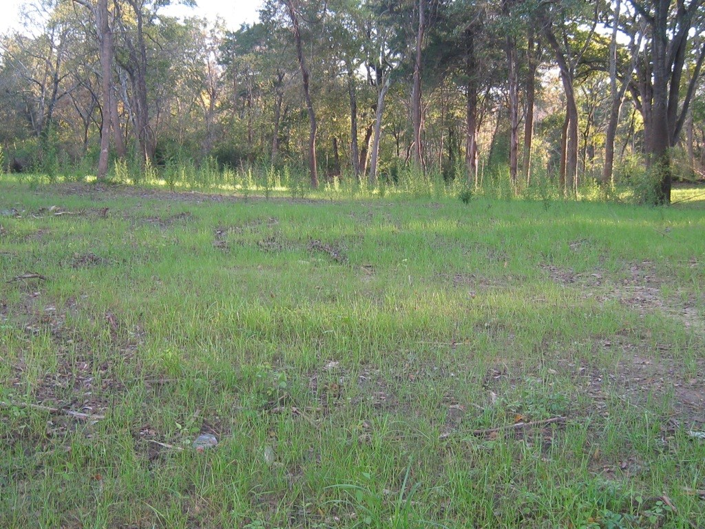 RESIDENTIAL LOT FOR SALE FRANKSTON TX